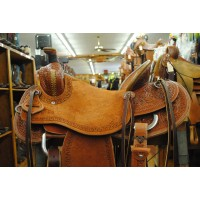 Loredo Saddle out Greenville TX