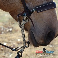 Diamond Hackamore
